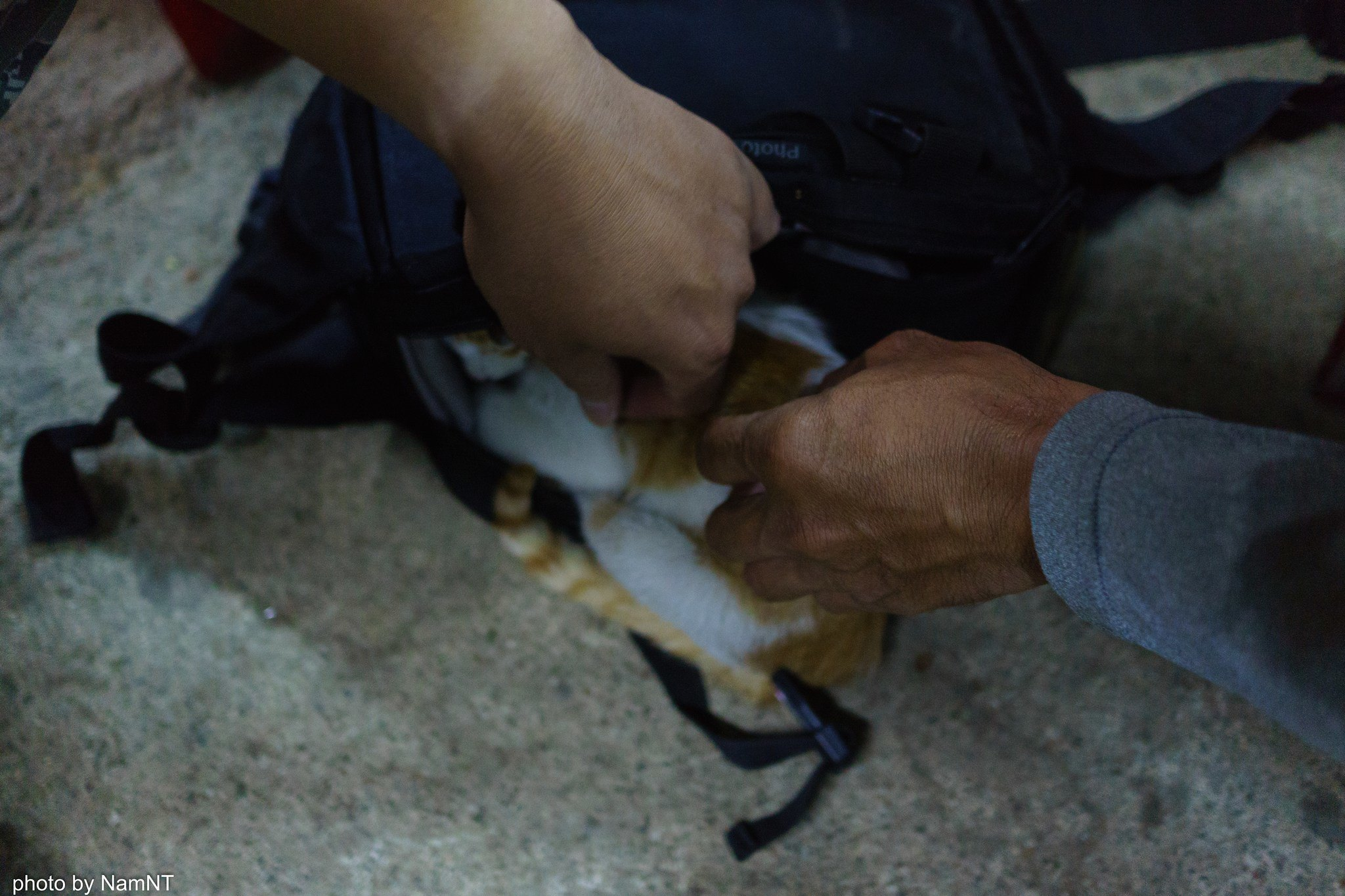 19360703999 c1a0acb705 k - [Phượt] - SG-Cổ Thạch- Nha Trang- Đà Lạt: ngàn dặm mua hạt é cho người thương