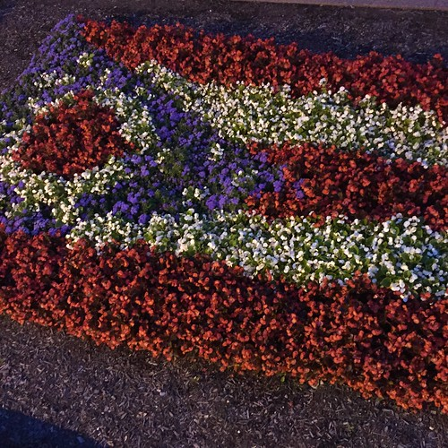floral ohio flag