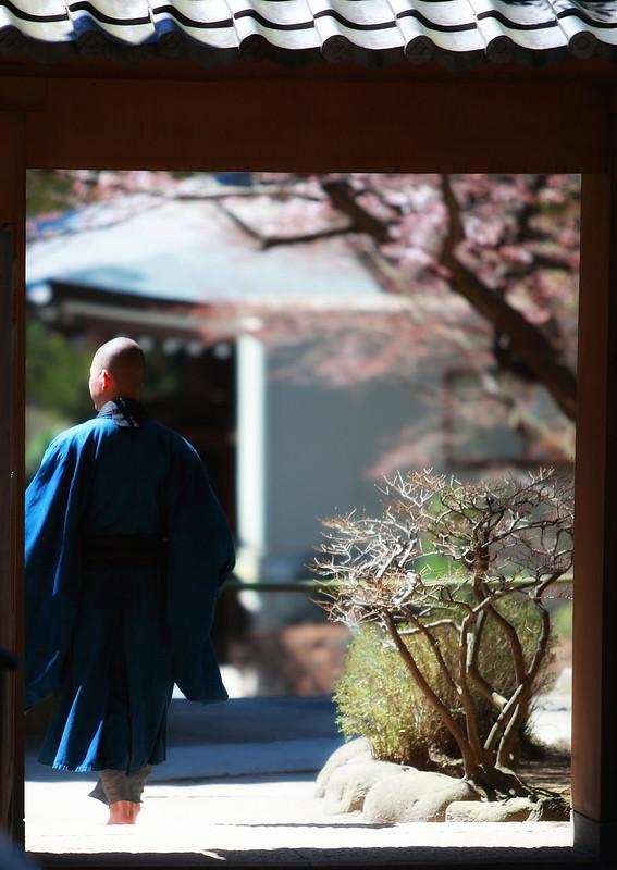 A Zen Moment In Kamakura, Japan