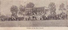 Pavilion on the Willunga Show Ground, 1906.