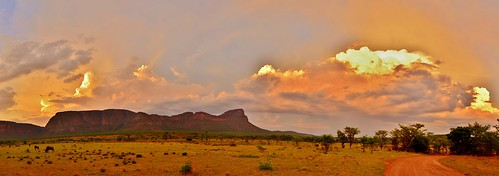 africa travel sunset wild sky panorama mountain storm color animals clouds southafrica nikon ryan african pano wildlife south panoramic 5100 thunder wildebeest limpopo 2015 grennan d5100 rwgrennan rgrennan