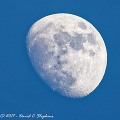Waxing Gibbous Moon On Jan 8th