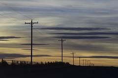 """Logan County, Colorado, CR 38, W of CR 37, NNW of Sterling, 40°42'8"""" N 103°13'50"""" W - PLDL6636"""