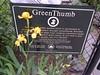 Irises & Green Thumb sign 5-15