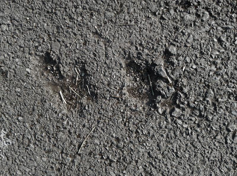 asphalt-texture-2015-06-12-3000px_texturepalace_08