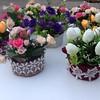 #mother's #handmade #flowers #garden #decorations #doityourself #DIY #mymotheristhebest #sweetyhome #Ganja #Azerbaijan #az #aztagram #aztag