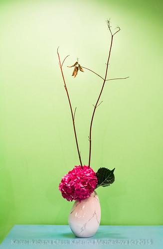 Hydrangea: Winter. Mass & Line Ikebana