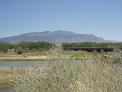 Rio Grande at Bernilillo Bridge