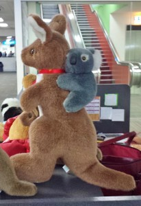 All Tom wanted out of our trip to OZ was to see a Koala riding a Kangaroo and his wish came true at the airport!