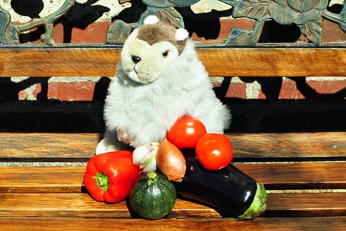 Normandie Karla Kunstwadl Ratatouille Gemüse schmoren Gemüsegericht Fraß Provence Rezept Tomate Aubergine Zucchino Zwiebel Knoblauch Paprika Kräuter Cidregesalzene Butter Algen Foto Brigitte Stolle 2015