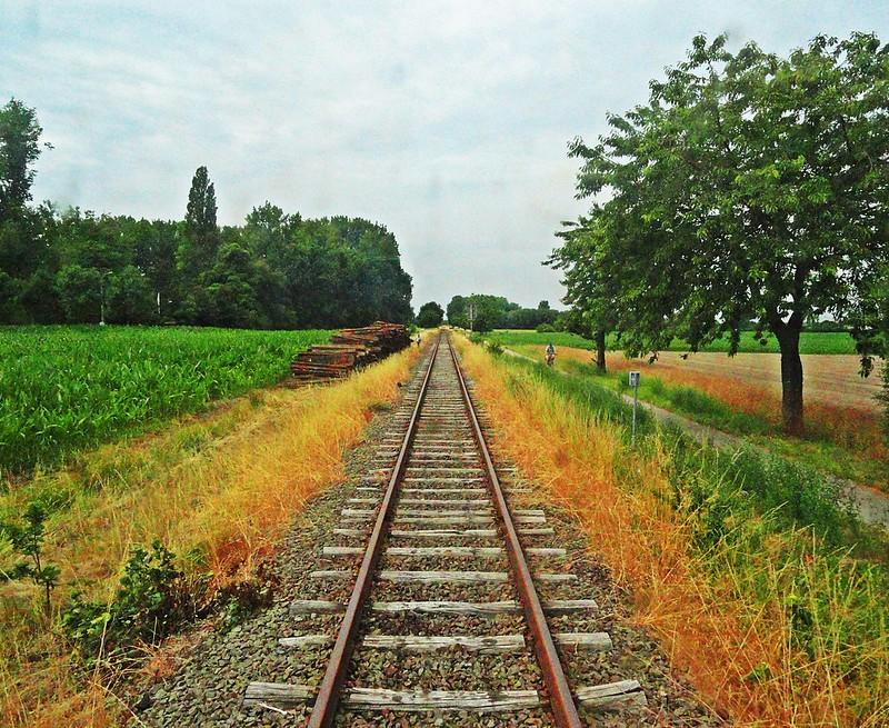 Scheldeland in Stoom