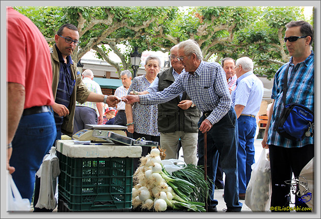 Feria de los ajos en Briviesca (9)