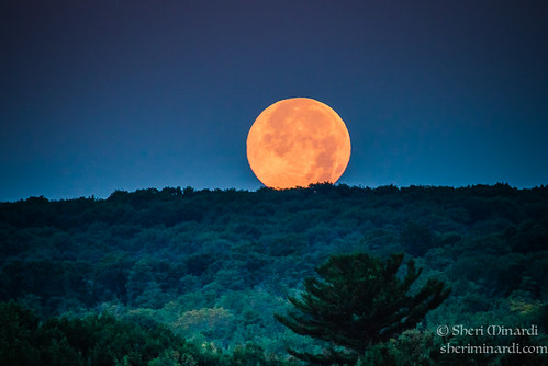 Blue Moon on the Hill