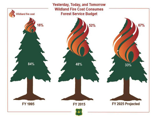 Yesterday, Today and Tomorrow: Wildland Fire Cost Consumes Forest Service Budget graphic