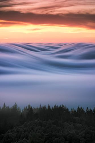 b r û l é e | marin county, california por Lorenzo Montezemolo