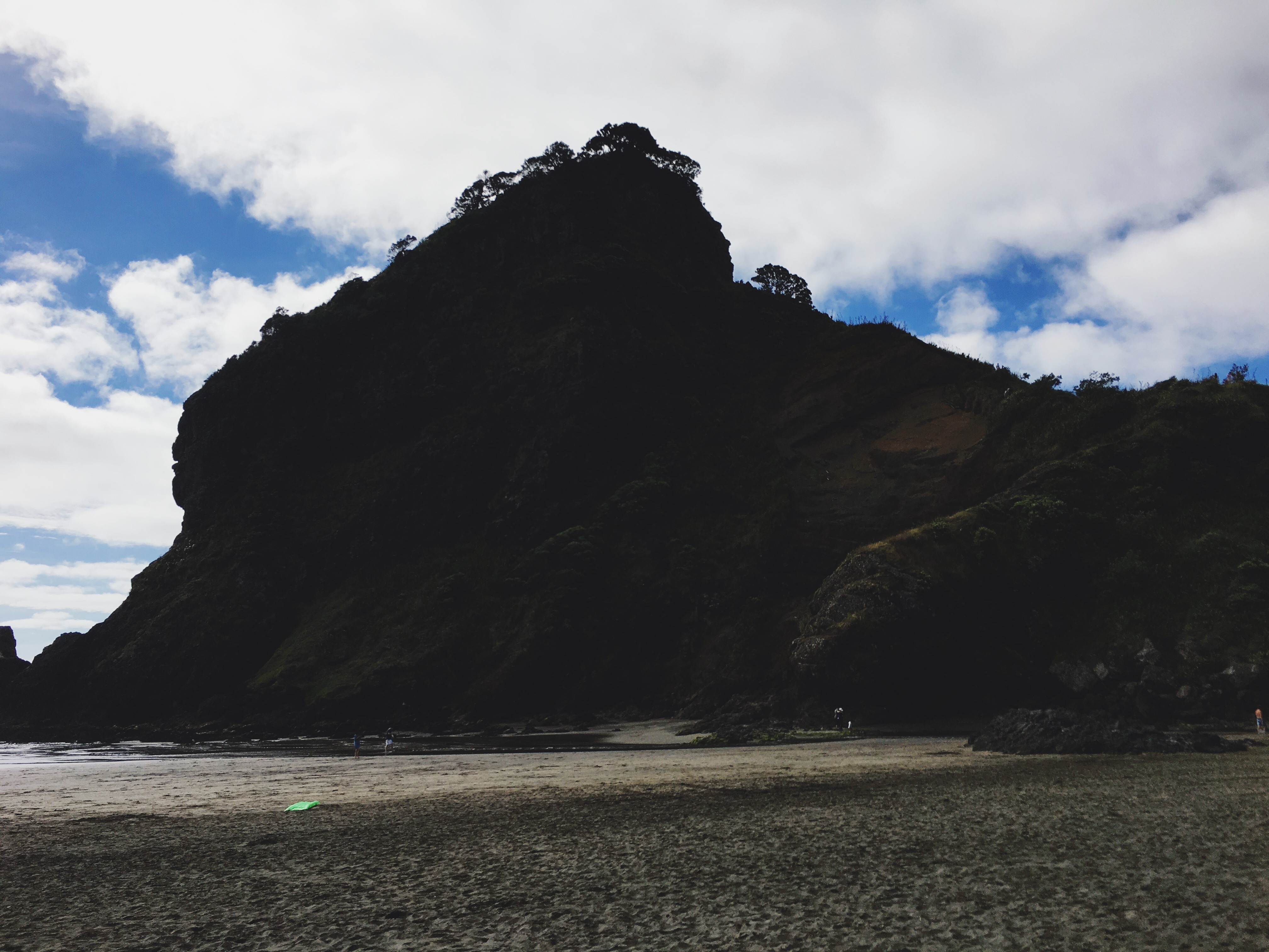 Lion Rock - Piha Beach