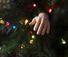 xmas tree ornaments-008