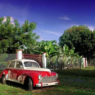 Peugeot 203 - Guadeloupe, France