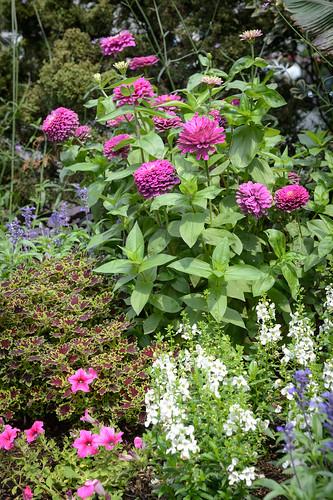 FilipWolak-LSBID-Gardens-8208