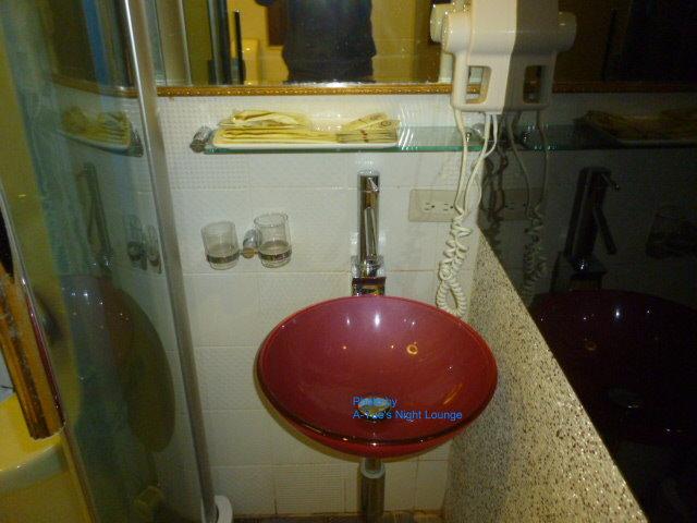13儷達商務飯店 浴廁 2