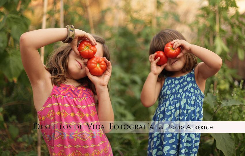 Las tomateras son muy divertidas!!!!