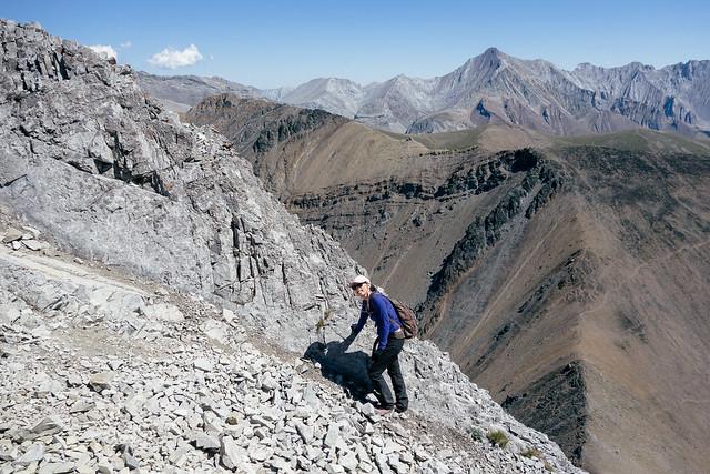 Scrambles - Mt. Tyrwhitt-7