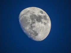 Winter Moon; Long Island, New York