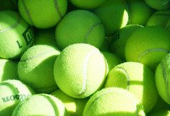 citrus(0.0), plant(0.0), fruit(0.0), food(0.0), lime(0.0), tennis ball(1.0), green(1.0), produce(1.0), ball(1.0),