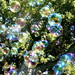 Bubble Rain by jurvetson