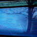Blue grate, Flatbush Avenue