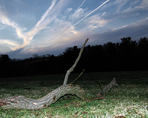 sky cloud tree field 1025fav landscape dead topv555 branch pennsylvania flash echo 100v10f creepy spooky flickrfirst mysterious rebuck