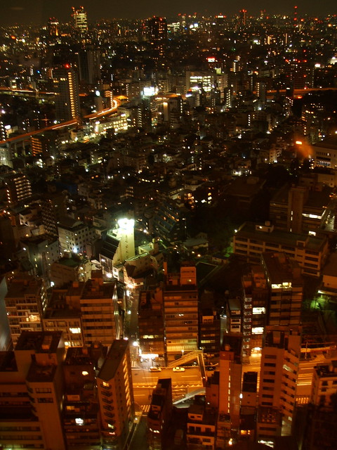 View form TokyoTower, Fujifilm FinePix F455