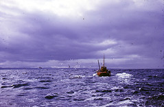 Pentland Firth 1963