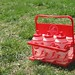 Small photo of Water Boy