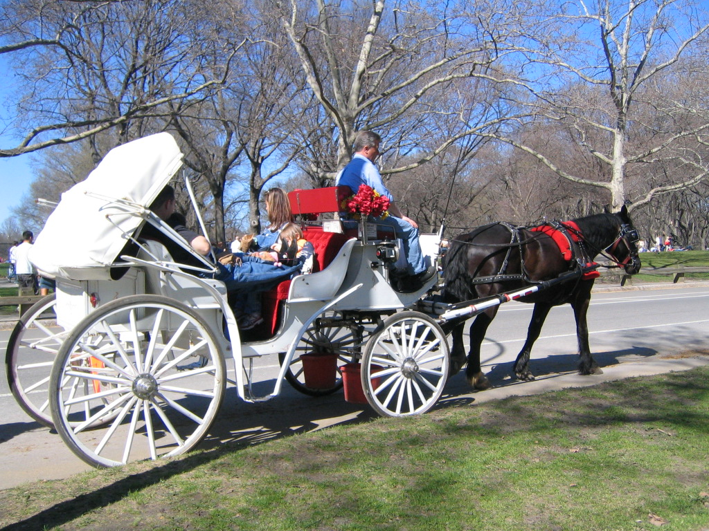 horsecarriages_central park