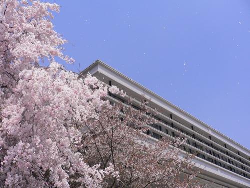 京田辺ローム記念館