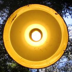 Mystery Spot Lamp