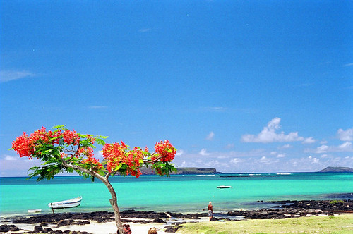107698907 6a6d047cec - The top 5 beaches in the world
