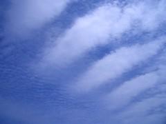 a patch of blue sky / 今日の空