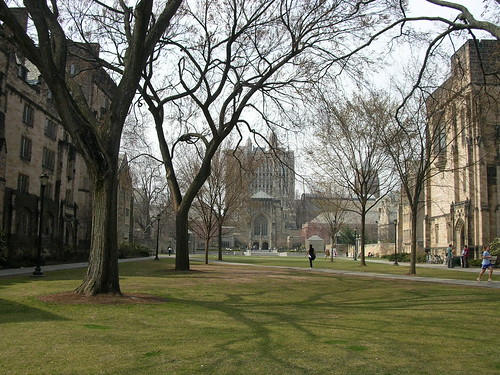 Looking towards the Yale library