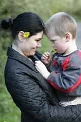 dandelion hug