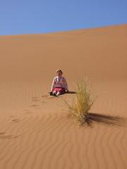 wadi(0.0), grassland(0.0), erg(1.0), sand(1.0), aeolian landform(1.0), natural environment(1.0), desert(1.0), dune(1.0), landscape(1.0), sahara(1.0), singing sand(1.0),