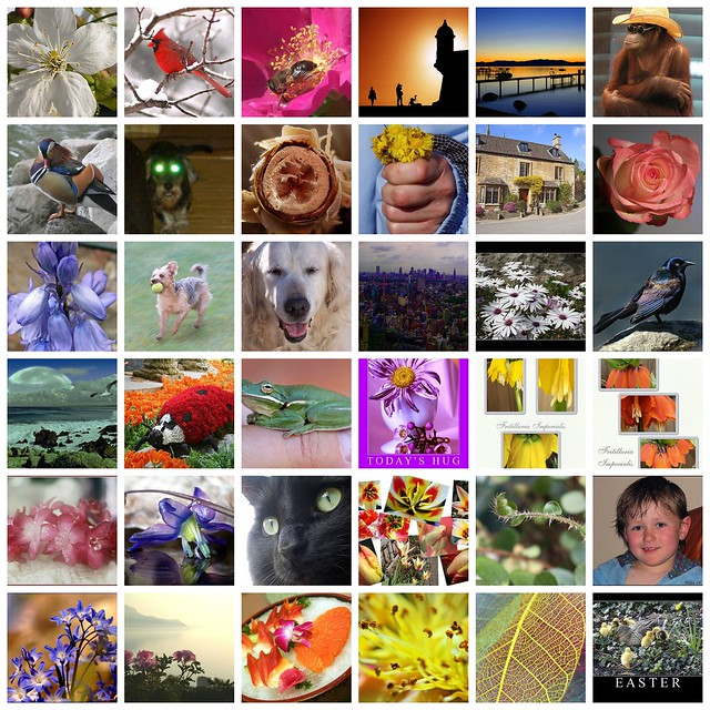 My Favorites Of Your Favorites Page 10 Flickr Photo Sharing
