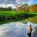 Mirror Water by Dietrich Bojko Photographie