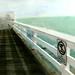 Malibu Pier - Handcolored by Alex Kehr