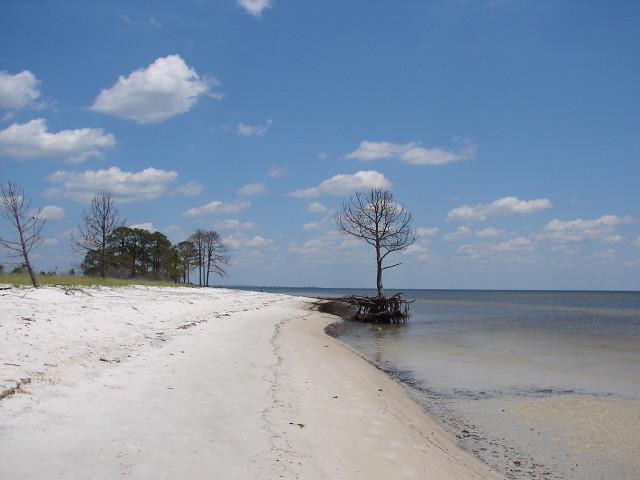 Marshes Sand Beach Fl