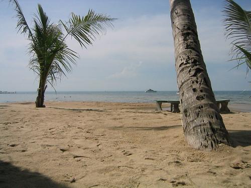 thailand, ko samui, lamai IMG_1108.JPG
