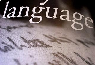 Zine Study XIV: [language]