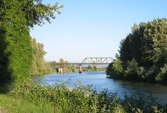 Snohomish Rail Bridge