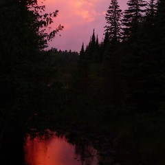 Beaver pond sunset reflections. #fryed365 #TBay